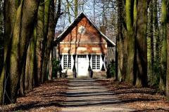 Burg Hülshoff | Teehaus im Wald hinter der Gartenanlage